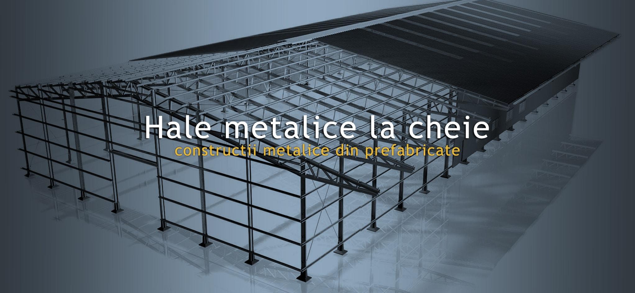 Ce costuri sunt necesare pentru a construi o hala metalica?