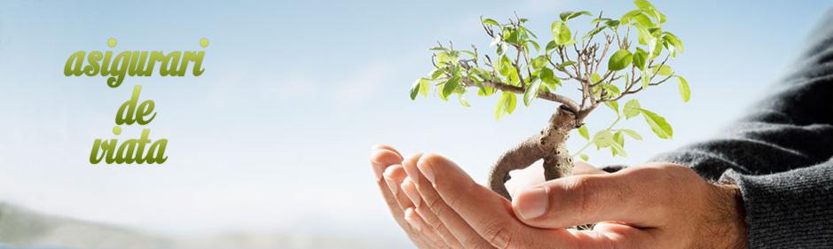 Ce informatii poti primi despre asigurari de viata de la Ovb Allfinanz Romania