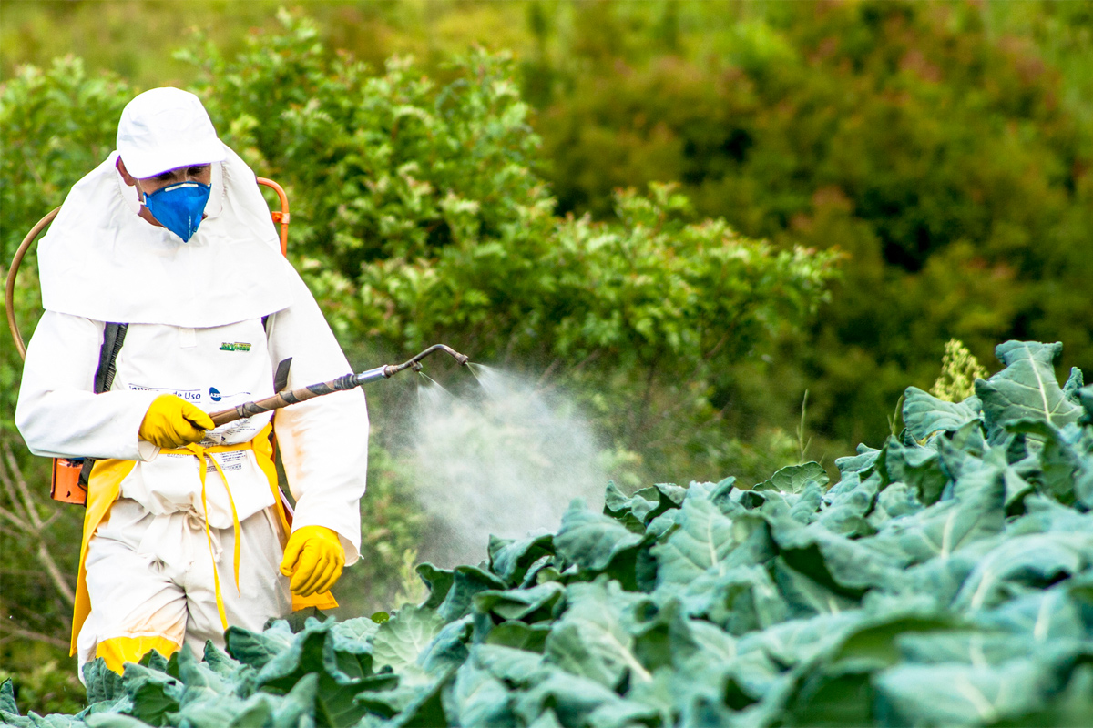 Ce este un pesticid?